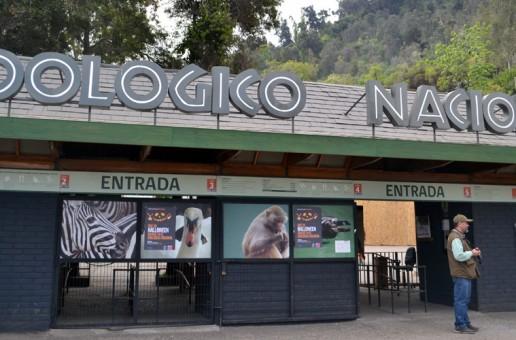 Accede al beneficio de acceder gratis al Zoológico Nacional