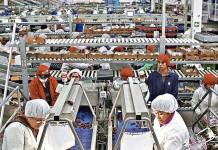 subsidio-al-empleo